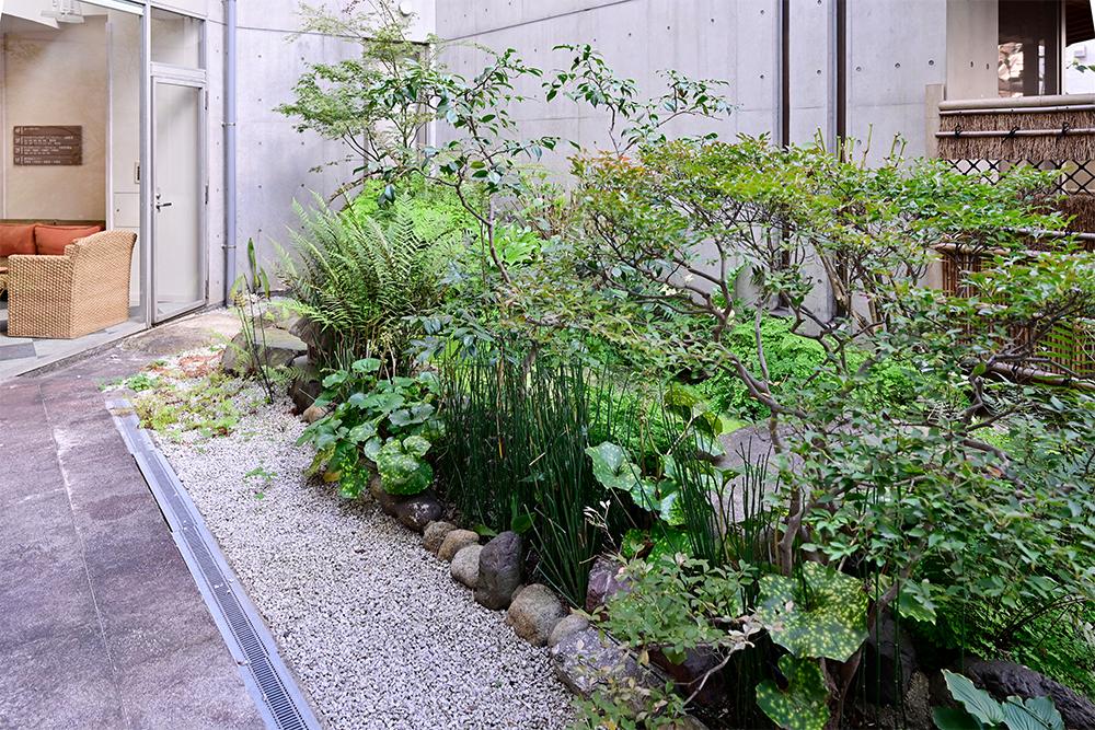 庭園処置室